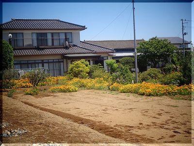 haramachiiikeshi1112233.jpg