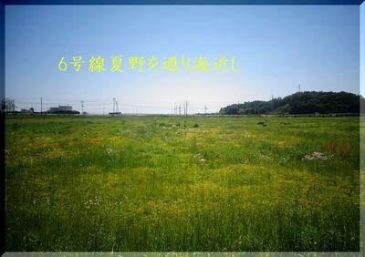 haramachiiikeshi1112233445566.jpg