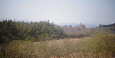 harukasumiiii12345.JPG