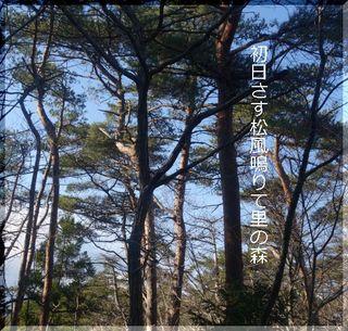 hatuhiiii11.jpg