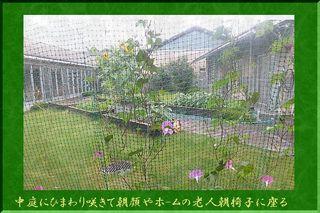 himawarinakaniwa.jpg