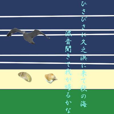 hisanohamakai11.jpg