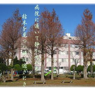 hospitallll111.jpg