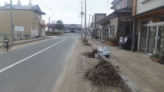 hossakura6666.jpg