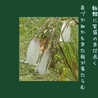hotarufukurooo111.jpg