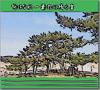 ichiyoukakou1.jpg