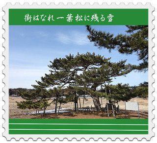 ichiyoukakou222.jpg