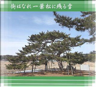 ichiyoukakou333.jpg