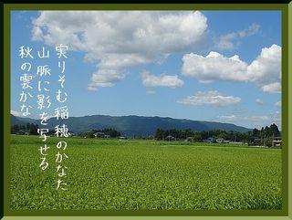 inaho121212.jpg