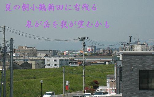 izuminokoruuu11.jpg