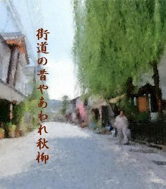 kaidouyanagi222.jpg