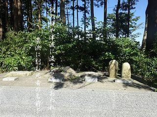 kaihamakohi.jpg