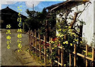 kakineeeeeee111_FotoSketcher.jpg