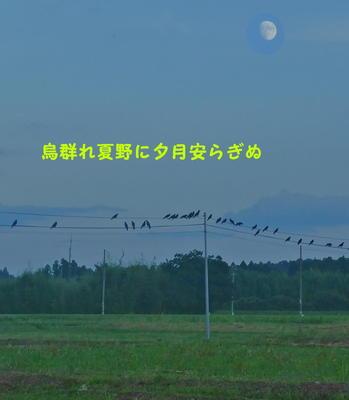 karasumoon1.jpg