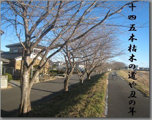 kareki145.jpg