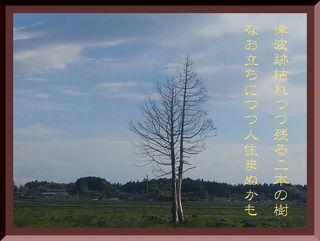 kareki22222222333.jpg