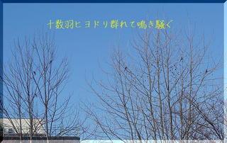 karekiiiiiii1112233.jpg