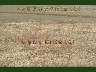 karekusa2222.jpg