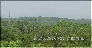 karouyama1212.jpg