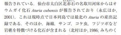 kasekisea1.JPG