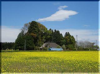kayabukiii111.jpg