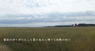 kayahama1.jpg