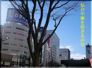 keyakusora111111.jpg