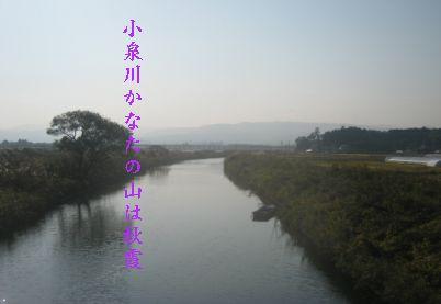 koizumirr1.jpg