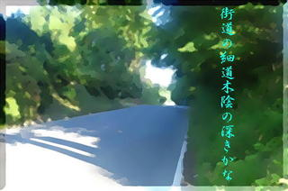 kokagekaidouu1_FotoSketcher22.jpg