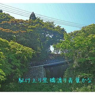kurohashiiii222.jpg