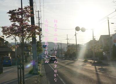 kyochikutou111.jpg