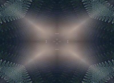 leaflighttt1.jpg