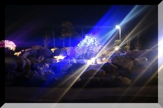 lighttt1.jpg
