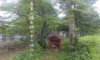 machibahashi2.jpg
