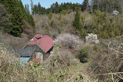 marumorihaioku56.jpg