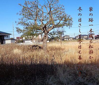 matuakichi1.jpg
