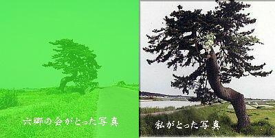 maturoku1.jpg