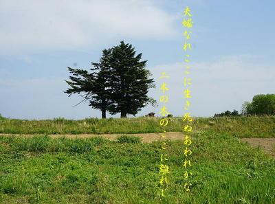 meotoki111.jpg