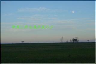moonfffff111.jpg
