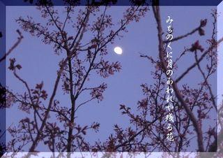 moonhana232323.jpg