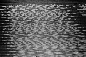 moonlightttt1112.jpg