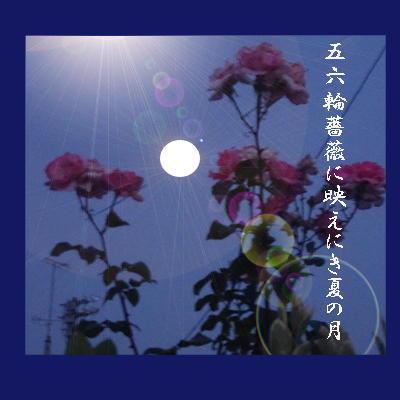 moonrose1111.jpg