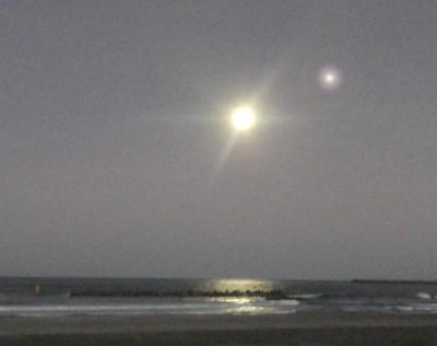 moonstar11111.jpg