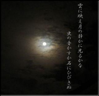 moonstone111.jpg