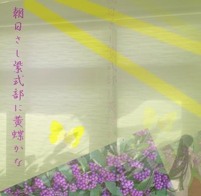 murasakishiki12321.jpg