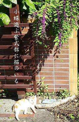 murasakishikibu111.jpg