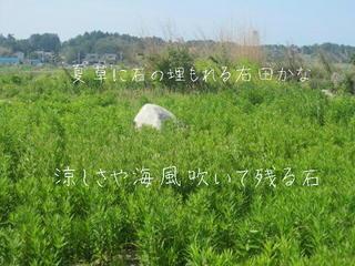 natukusaishi123.jpg