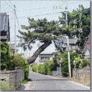 newmatumagaru1[1]_FotoSketcher.jpg