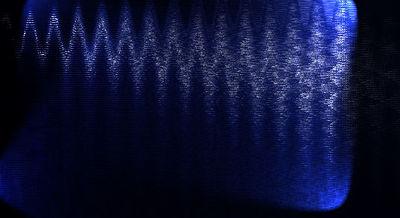 nightttforesttt12343555.jpg