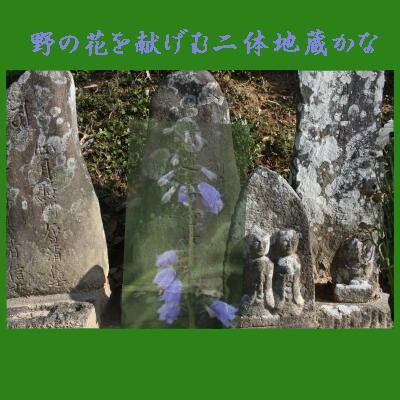 nonohanajizou123.jpg